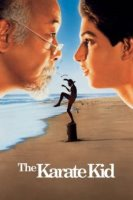 the karate kid 5279 poster